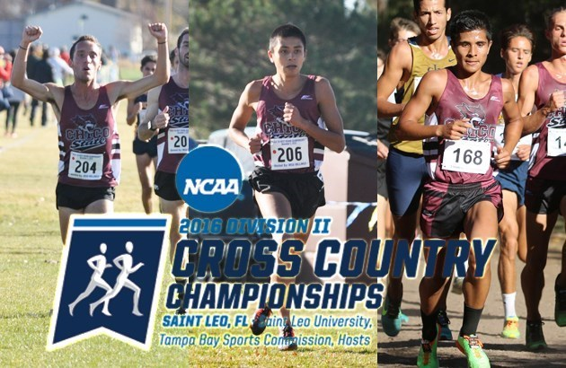 Photos of (l-r) Kyle Medina, Will Reyes and Steven Martinez with the NCAA Division II Cross Country Championships logo overlayed.